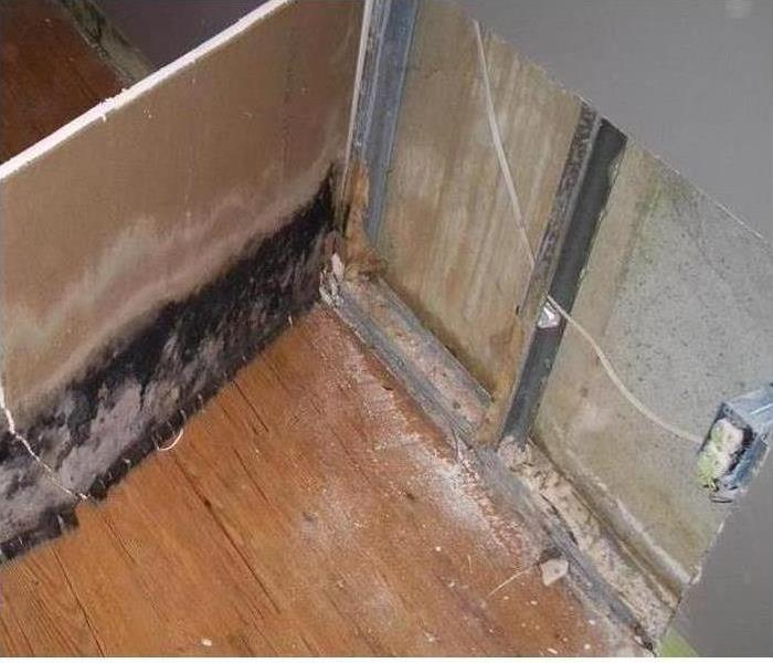 Mold Damage – Morganton House Before