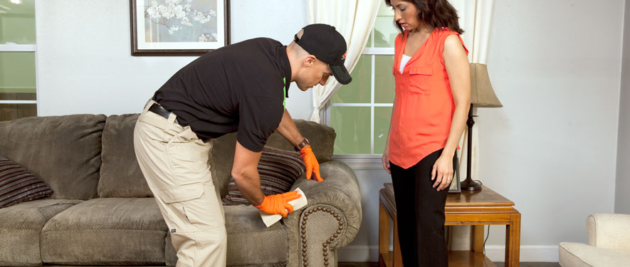 Morganton, NC carpet upholstery cleaning